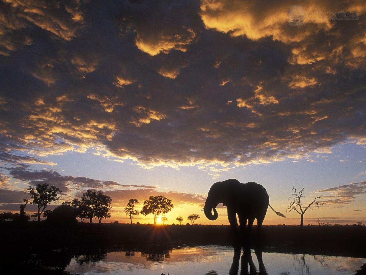 Ботсвана Пула