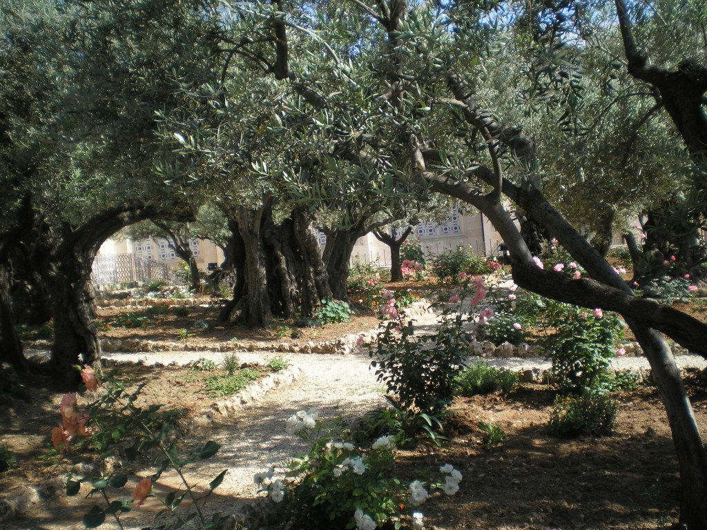 Гефсиминский сад