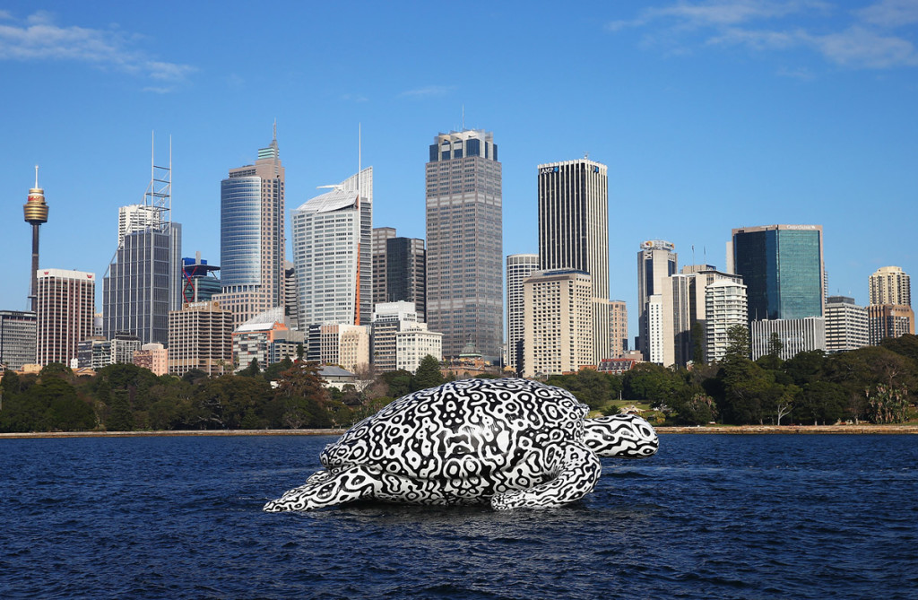 Gigantic Sea Turtle Sculpture Floats Past Sydney Harbour Bridge and Sydney Opera House