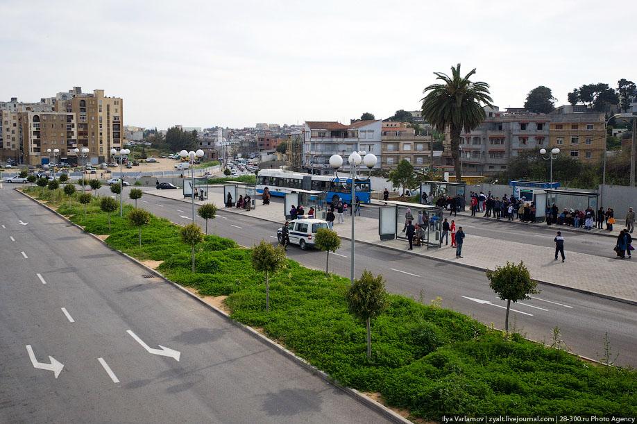 Общественный транспорт в Алжире